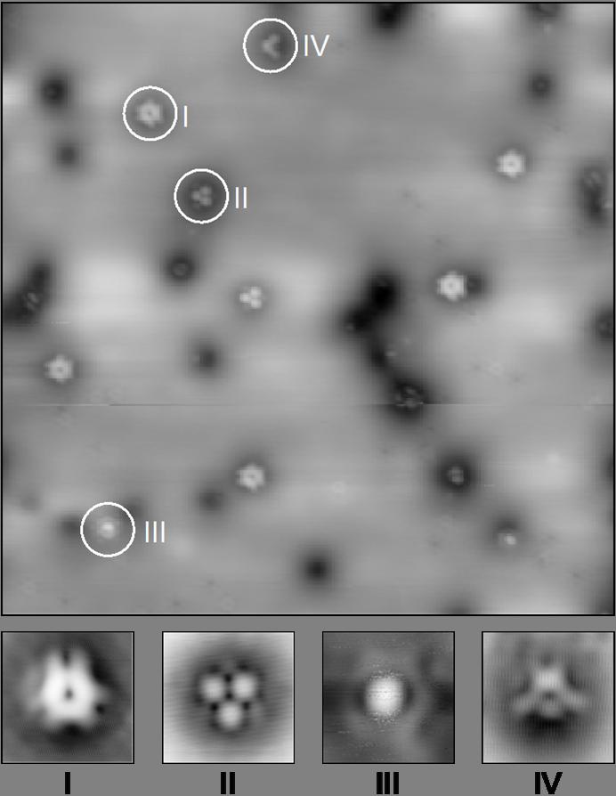 蔡司显微镜