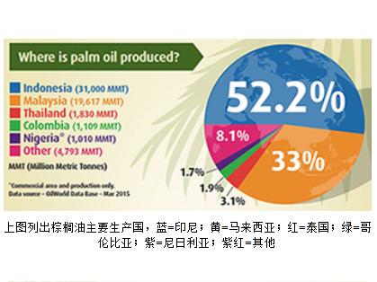 支持可持续的棕榈油生产