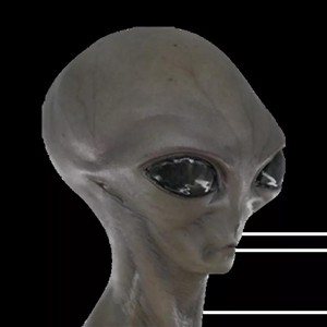 Alien-Grey-(1).jpg
